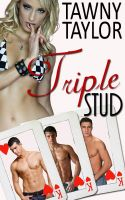 Cover for 'Triple Stud (erotic erotica menage)'