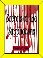Cover for 'Secrets Of The Sapphocans'