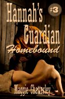 Cover for 'Hannah's Guardian, Homebound'