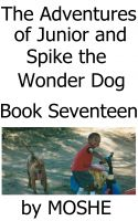 Cover for 'The Adventures of Junior and Spike the Wonder Dog. Book Seventeen: Surfing'
