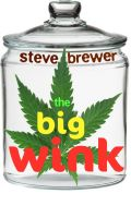 Cover for 'The Big Wink'
