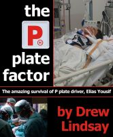 Cover for 'The P Plate Factor'