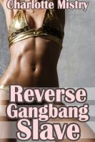 Cover for 'Reverse Gangbang Slave'