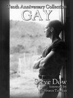 Cover for 'Gay: the tenth anniversary collection'