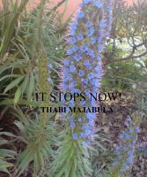 Cover for 'It Stops Now!'