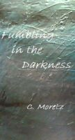 Cover for 'Fumbling in the Darkness'
