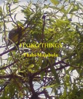 Cover for 'Fixing Things'