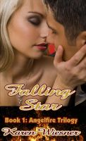 Cover for 'Angelfire Trilogy Book 1: Falling Star'
