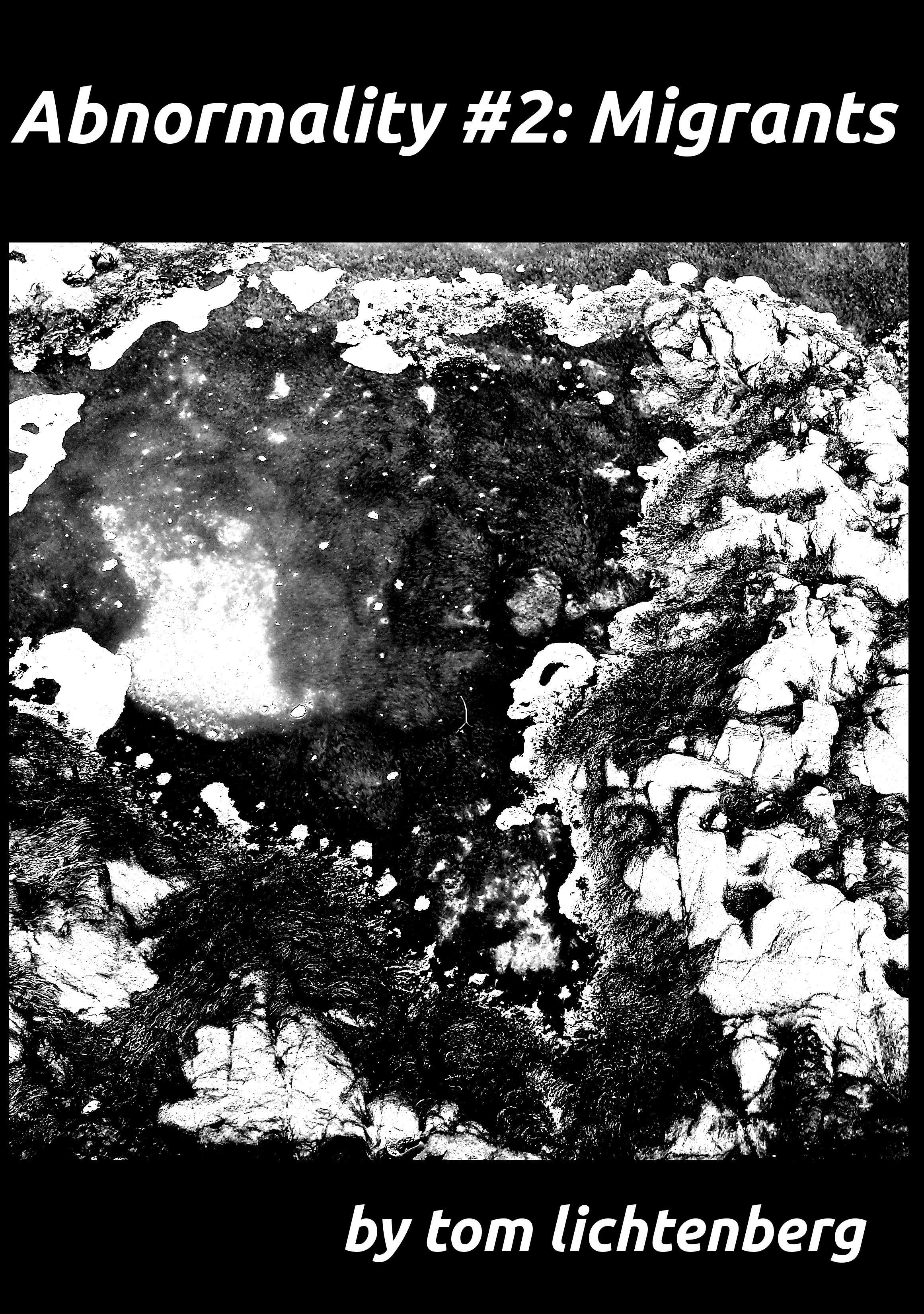 Tom Lichtenberg - Abnormality #2: Migrants