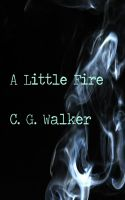 Cover for 'A Little Fire'