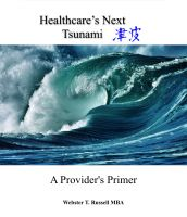 Cover for 'Healthcare's Next Tsunami, A Provider's Primer'