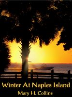 Cover for 'Winter At Naples Island'