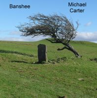 Cover for 'Banshee'
