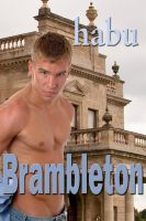Cover for 'Brambleton (A Gay Erotica Romance)'