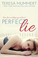 Cover for 'Perfect Lie'