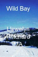 Cover for 'Wild Bay'