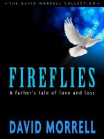 Cover for 'Fireflies: A Father's Classic Tale of Love and Loss'