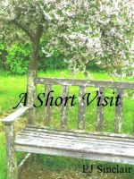 Cover for 'A Short Visit'