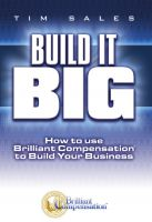 Cover for 'BUILD IT BIG: How to Use Brilliant Compensation to Build Your Business'