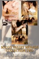 Cover for 'Macon Valley Menages Collection Two (Books 5-7)'