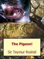 Cover for 'The Pigeon!'