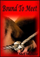 Cover for 'Bound To Meet'
