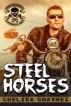 Steel Horses - Act 1 (MC Erotic Romance) by Chelsea Chaynes