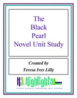 Cover for 'Black Pearl Novel Unit Study'