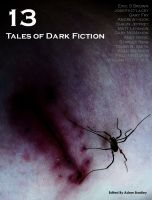 Cover for '13: Tales of Dark Fiction'