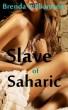 Slave of Saharic by Brenda Williamson