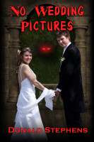 Cover for 'No Wedding Pictures'