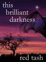 Cover for 'This Brilliant Darkness'