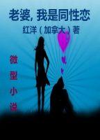 Hongyang(Canada)/ 红洋(加拿大) - Sorry Dear, I Am A Gay: A Chinese Novel 中文小说: 老婆,我是同性恋