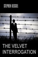 Cover for 'The Velvet Interrogation (Gay Romance / Thriller)'