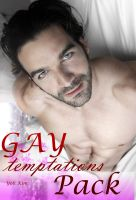 Cover for 'Gay Temptations Package'