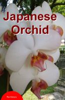 Cover for 'Japanese Orchid'
