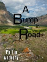 Cover for 'A Bump in the Road'