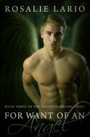 Cover for 'For Want of an Angel'