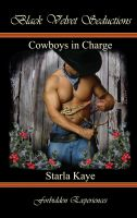 Cover for 'Cowboys in Charge'