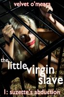 Cover for 'The Little Virgin Slave: Suzette's Abduction (Taboo Noncon Erotica)'
