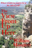 Cover for 'The View From Up Here'