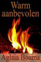 Cover for 'Warm aanbevolen'