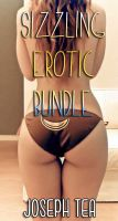 Cover for 'Sizzling Erotica Bundle'