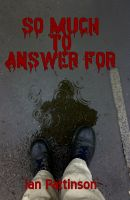 Cover for 'So Much To Answer For'