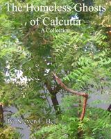 Cover for 'The Homeless Ghosts of Calcutta, A Collection.'