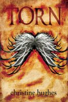 Cover for 'Torn'