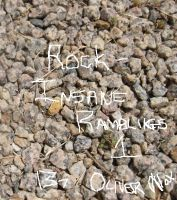 Cover for 'Insane Ramblings 1 - Rock'