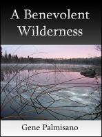 Cover for 'A Benevolent Wilderness'