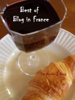 Cover for 'Best of Blog in France'