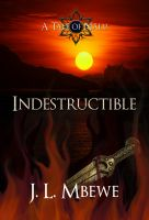 Cover for 'Indestructible'